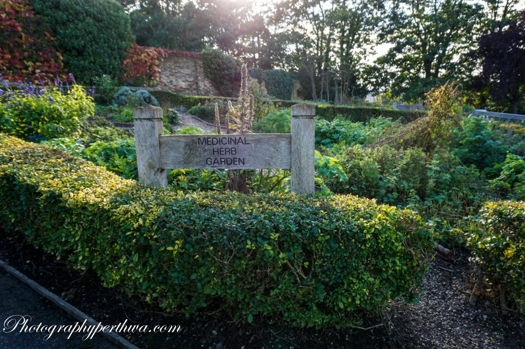 Water Tower Park Herbal Garden, Croydon