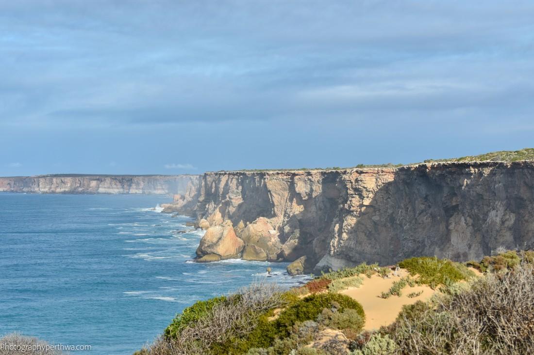Head of Bight cliffs (1 of 1)