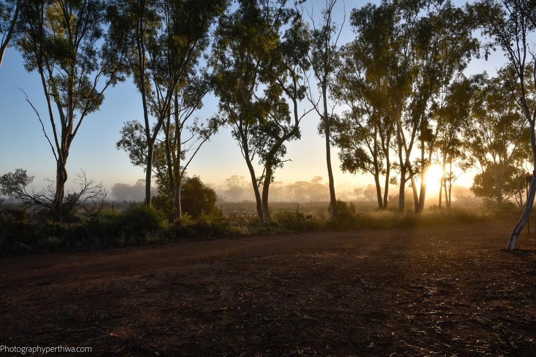 Misty morning2 (1 of 1)