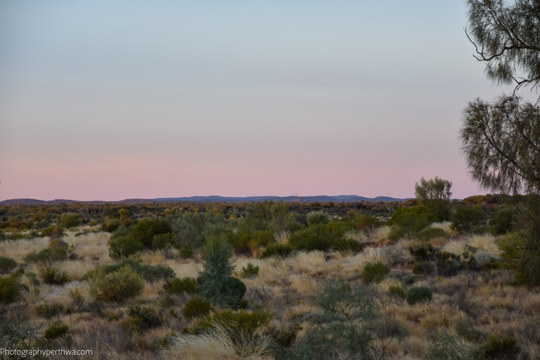 a view to the Ranges (1 of 1)