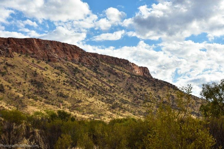Alice Springs Desert Park - Mt Gillen (1 of 1)