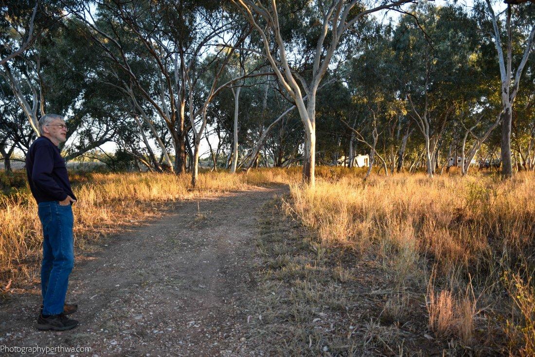 Coolibar Walk (1 of 1)