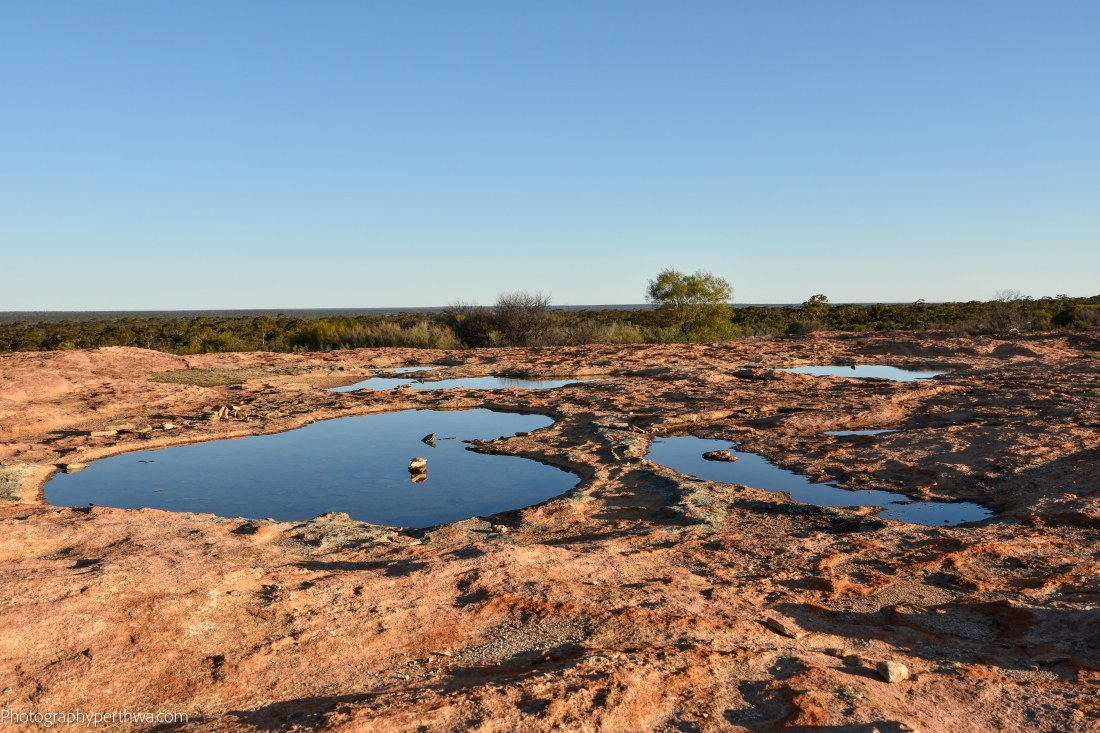 water holes on the rock (1 of 1)