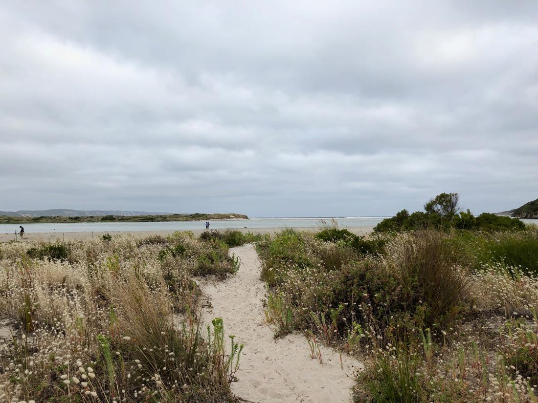 Denmark Ocean Beach - 1