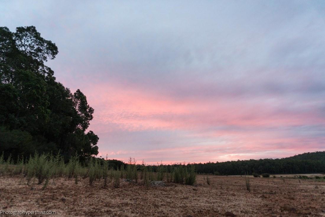 sunset8 (1 of 1)