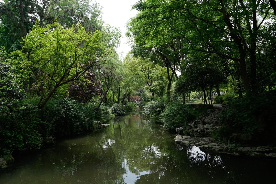 Humble Admnistrator's Garden1 (1 of 1)